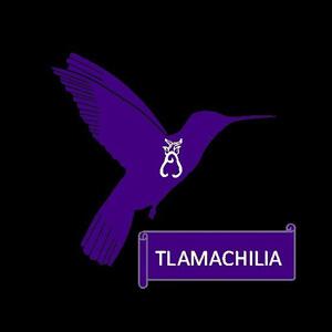 Logo Tlamachilia